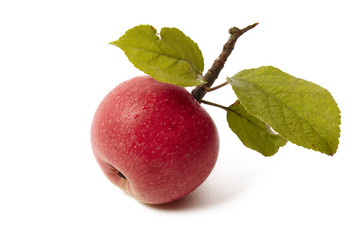 Ripe fresh red apple with leaf