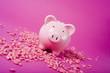 rosa sparschwein auf pinkfarbenem untergrund