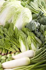 初春の野菜集合