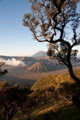 Mt Bromo Sunrise