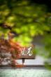 Calligraphie japonaise et feuillage d'automne