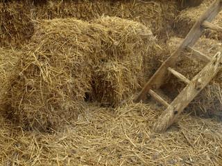 grange à foin