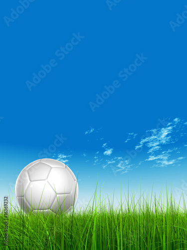 High resolution 3D white soccer ball on green grass