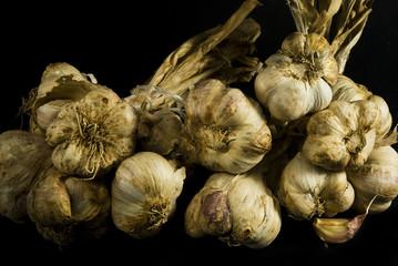 mazzo di aglio