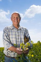 Farmer standing in sunny rape seed field