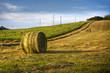 Hay bales on rural landscape