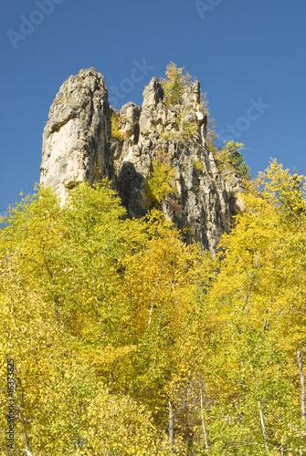 Fall Colors in the Black Hills 17