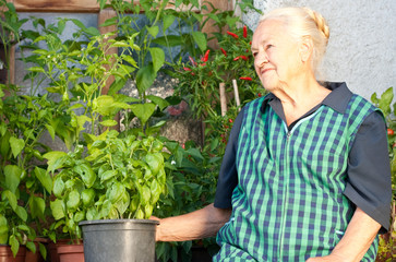 older woman cultivating herbals