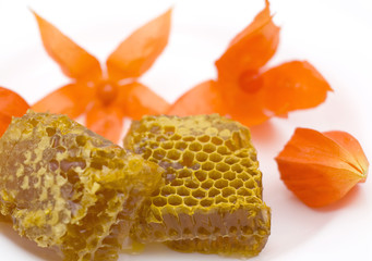 Honey honeycombs