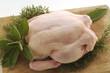 Pollo crudo su tagliere con erbe