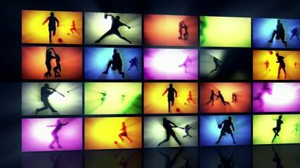 Sport wall