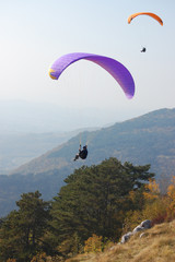 nova gorica paragliding