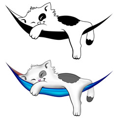 Gattino in Amaca-Kitten on Hammock-Chaton sur Hamac