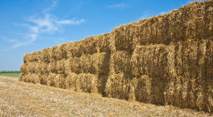 Wall of Hay