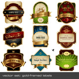 Fototapety vector set: gold-framed labels - 9 items