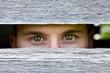 Eyes peering through wood slats