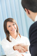 Businesspeople, or businessperson and client handshaking