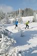 Langläufer in winterlicher Landschaft