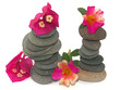 fleurs sur pyramides de galets