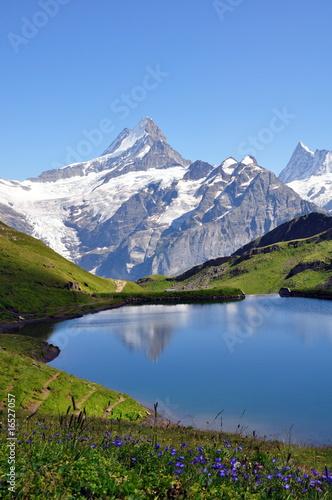 Paysage de montagne © Efel