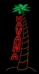 close up of a neon palm tree and Havana sign