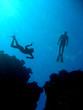 Leinwanddruck Bild - Freediving