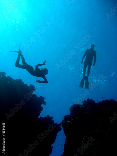 Leinwanddruck Bild Freediving