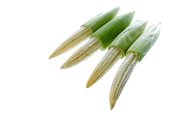 Baby Corns Isolated