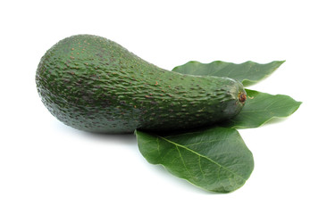 Avocado ripe with green leaves