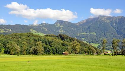 vallée alpine verdoyante