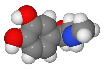 Space-filling model of adrenaline molecule