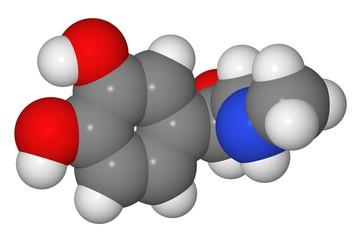 Space-filling model of adrenaline molecule
