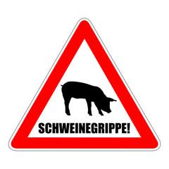 vorsicht schweinegrippe