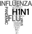 H1N1 pandemic word cloud