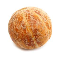 Cantaloupe muskmelon