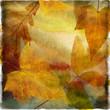 autumn leafy paper