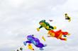 Funny kites