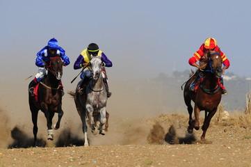 Horse racing (competition), Kfar Kana, Israel