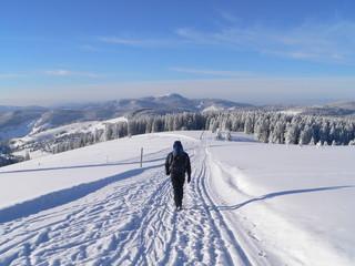 Einsamer Wanderer im Schnee