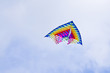 Kite high in the sky