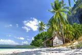 tropical solitude poster
