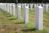 Military Headstones poster