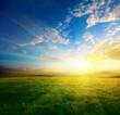 spring sunset - 16648096