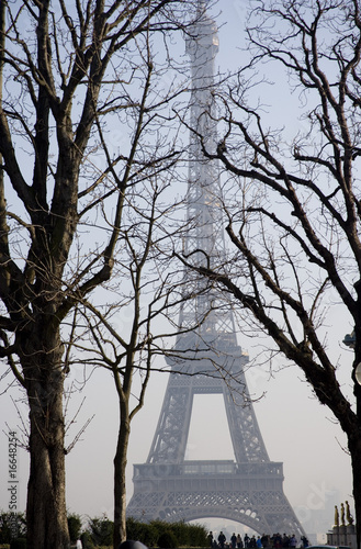 wieza-eiffla-w-paryzu-miedzy-drzewami