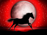 Cavallo e Luna-Horse and Moon-Cheval et Lune