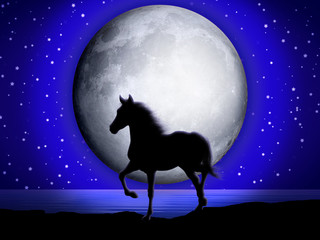 Cavallo e Luna-Horse and Moon-Cheval et Lune-2