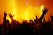 Quadro Cheering crowd at concert