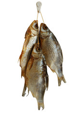 Three smoked sea roach fishes isolated on white