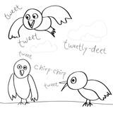 Bird Doodles poster