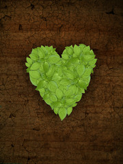 green plant heart on old grunge surface